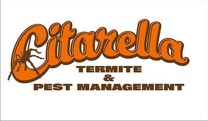 Citarella Logo.jpg