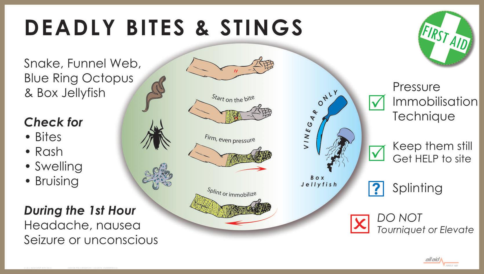 deadly bites.jpg