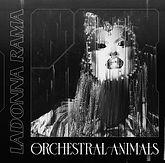 orchestral-animals-LOWER-QUAL.jpg