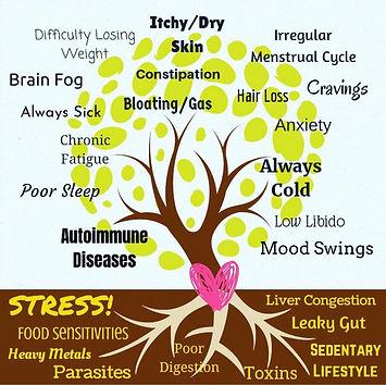 Symptoms_Causes_TREE-4.jpg