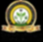 CIHAS Logo