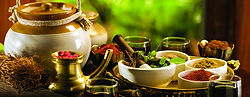 Herbal Practitioner | Sacramento