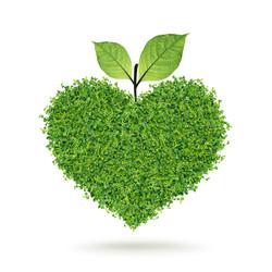 Herb heart8341494