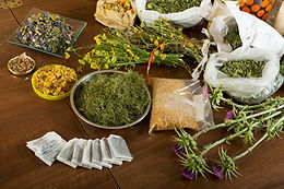 Master Herbal Practitioner | herbal practitioner training