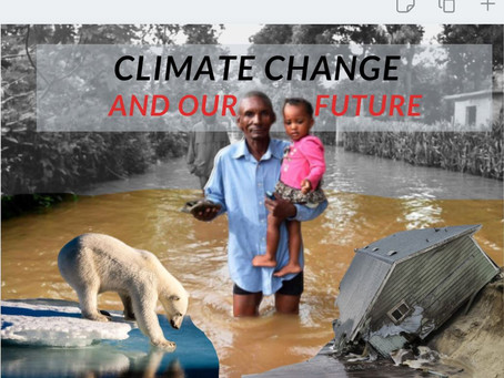 The Effects Of Climate Change On Our Generation: Is the damage beyond repair?