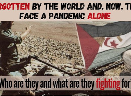 Forgotten By The World, And Abandoned During A Pandemic: What is the Western Sahara Conflict?
