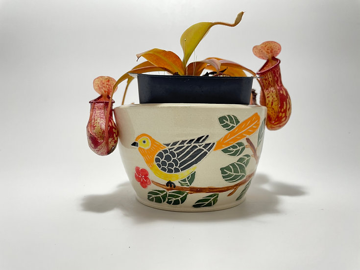 "Orange Birds with Red Flowers 4"" Flower Pot"