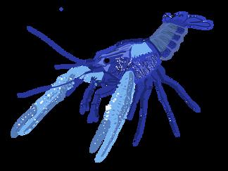 langosta-azul.png