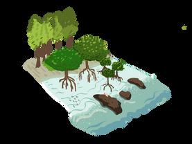 grafico manglar.png