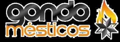 Gondomesticos Logo_s-fundo.png