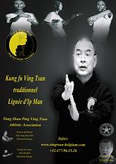 tangshunping_edited.png
