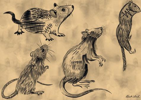 RAT FLASH