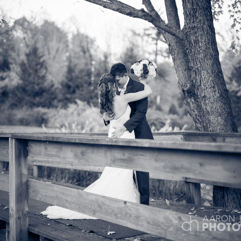 bride and groom stand together on wood bride