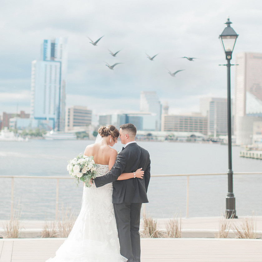 Baltimore waterfront bride and groom photo birds flying over