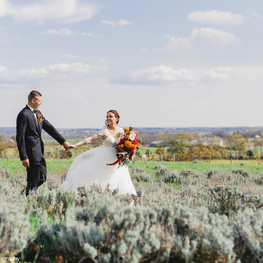 bride leading groom by the hand in field