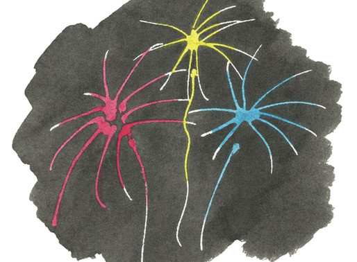 Helping your dog cope with fireworks (and other loud noises!)