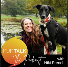 Podcast with the Zara DogDog Club founder