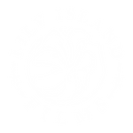 LILY-ISLAND-FILMS-LOGO-WHITE-ON-TRANS-RG