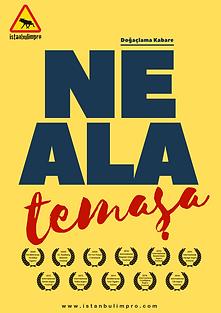 ne ala (logosuz).png