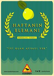 eleman_SON kopya.jpg