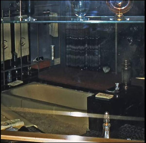Crane Bathroom of Tomorrow gold tub.JPG