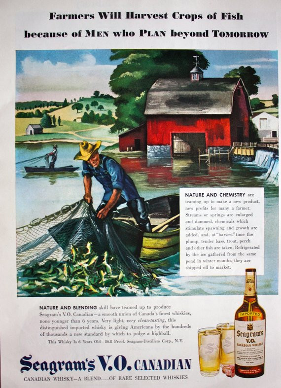 1946 Fishcropping