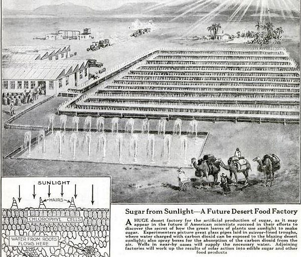 Popular Science, April 1923, p23, A Future Desert Food Factory 33