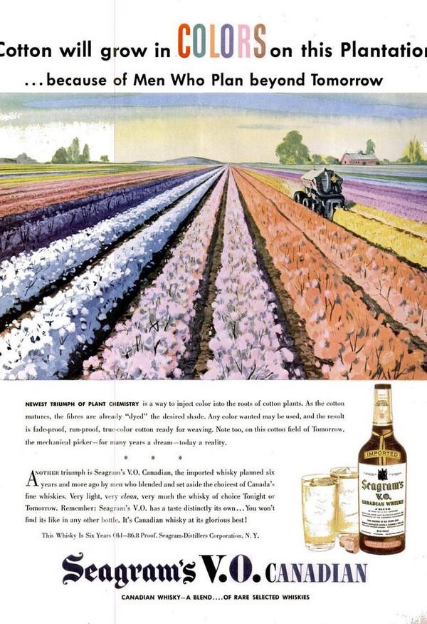 1946-05-20 Pre-colored cotton