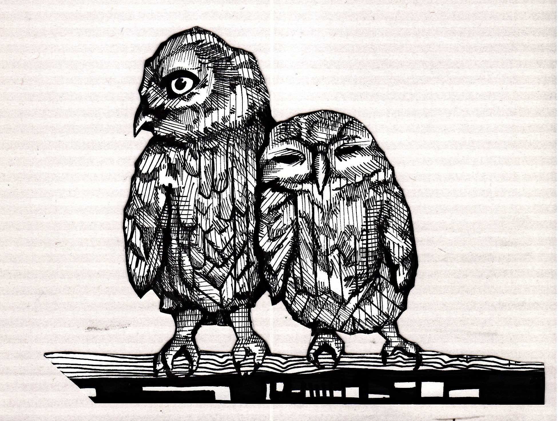 The Owlets