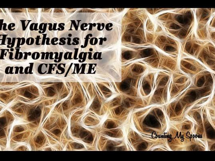Chronic Fatigue Caused by Vagus Nerve Infection?
