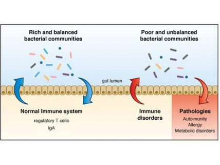 From BIOHM Health: Immune Health & COVID-19