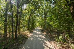 Scenic Pathways