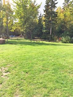 campsite-lawn-picnic-table.png