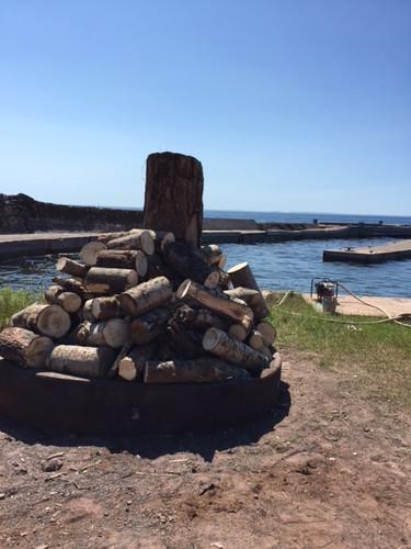 dock-wood-pile.JPG