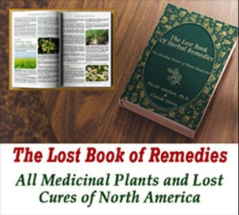 Herbal Remedies 01.jpg