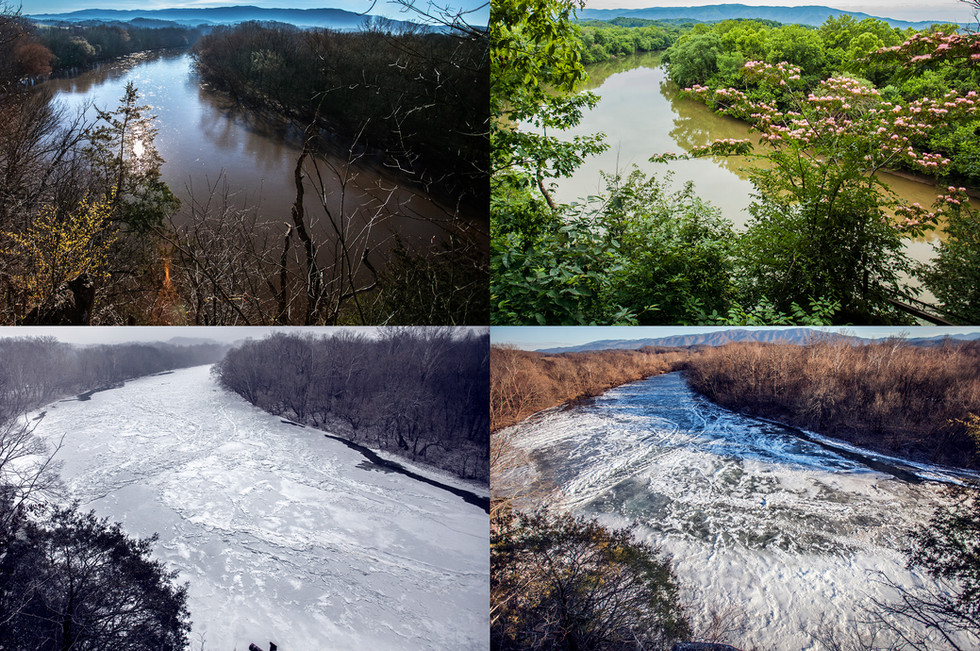 All Seasons View From Log Cabin websize.