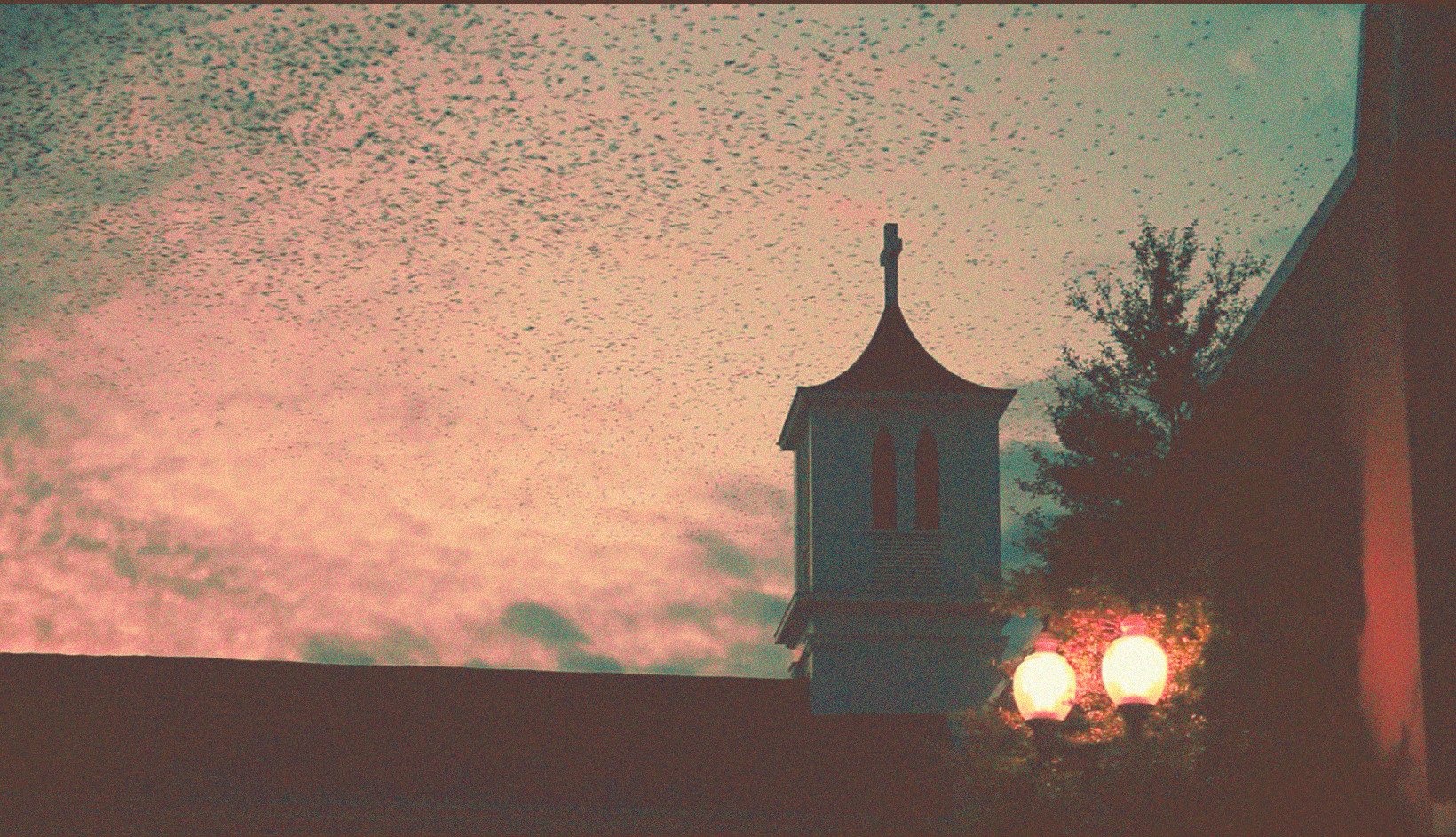 Greeneville Church Birds Sunset.jpg