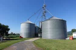 Windridge Farm