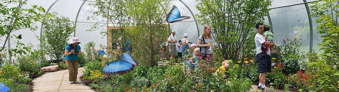 Chicago Botanic Gargens