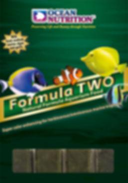 Formula Two.jpg