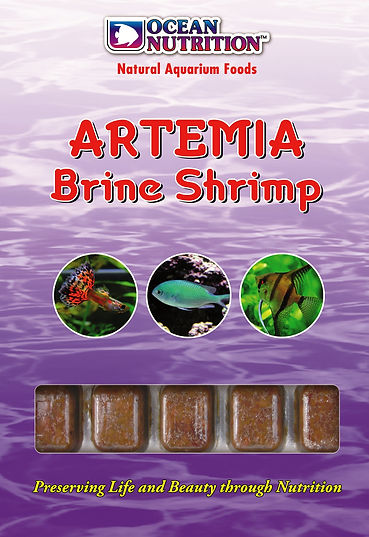 Artemia.jpg