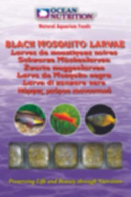 Black Mosquito Larvae.jpg