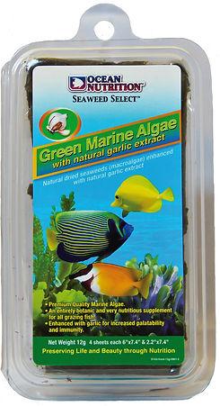 Green Marine Algae 12gr.jpg