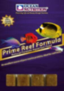 Prime Reef.jpg