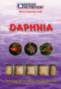 Daphnia.jpg