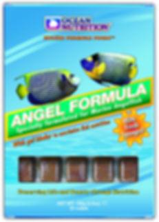 Angel Formula.jpg
