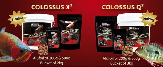 Colossus Range.jpg