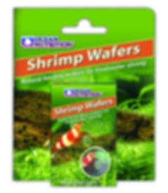 shrimp wafer 300dpi.jpg