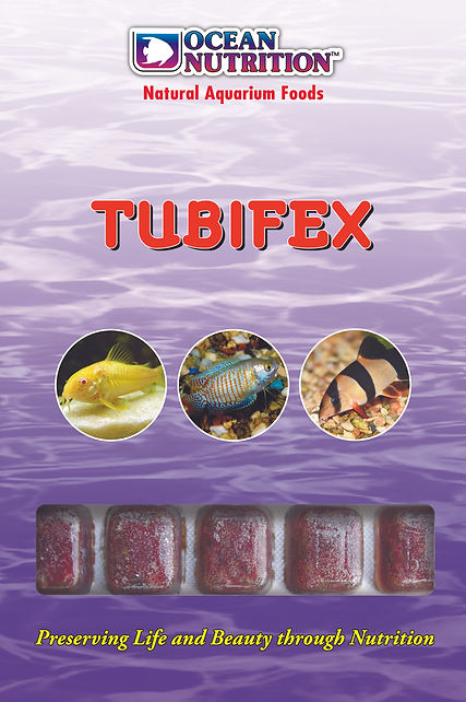 Tubifex.jpg