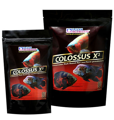 Colossus Floating.jpg
